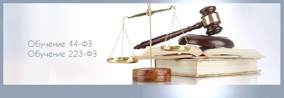 юридическая консультация по аукционам